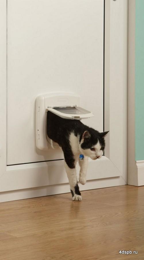 Вход в двери для кошки своими руками 55